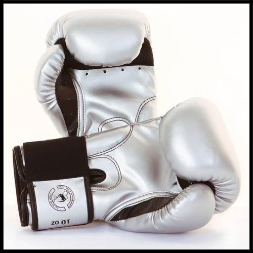 Venum - Экипировка - Challenger - Boxing Gloves - Silver фото, цена, описание